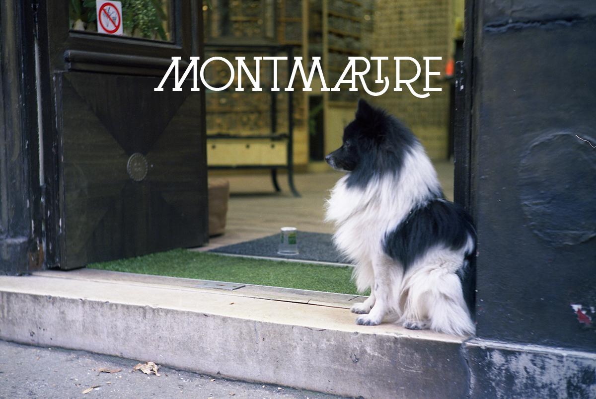 Art45-Montmartre-couv