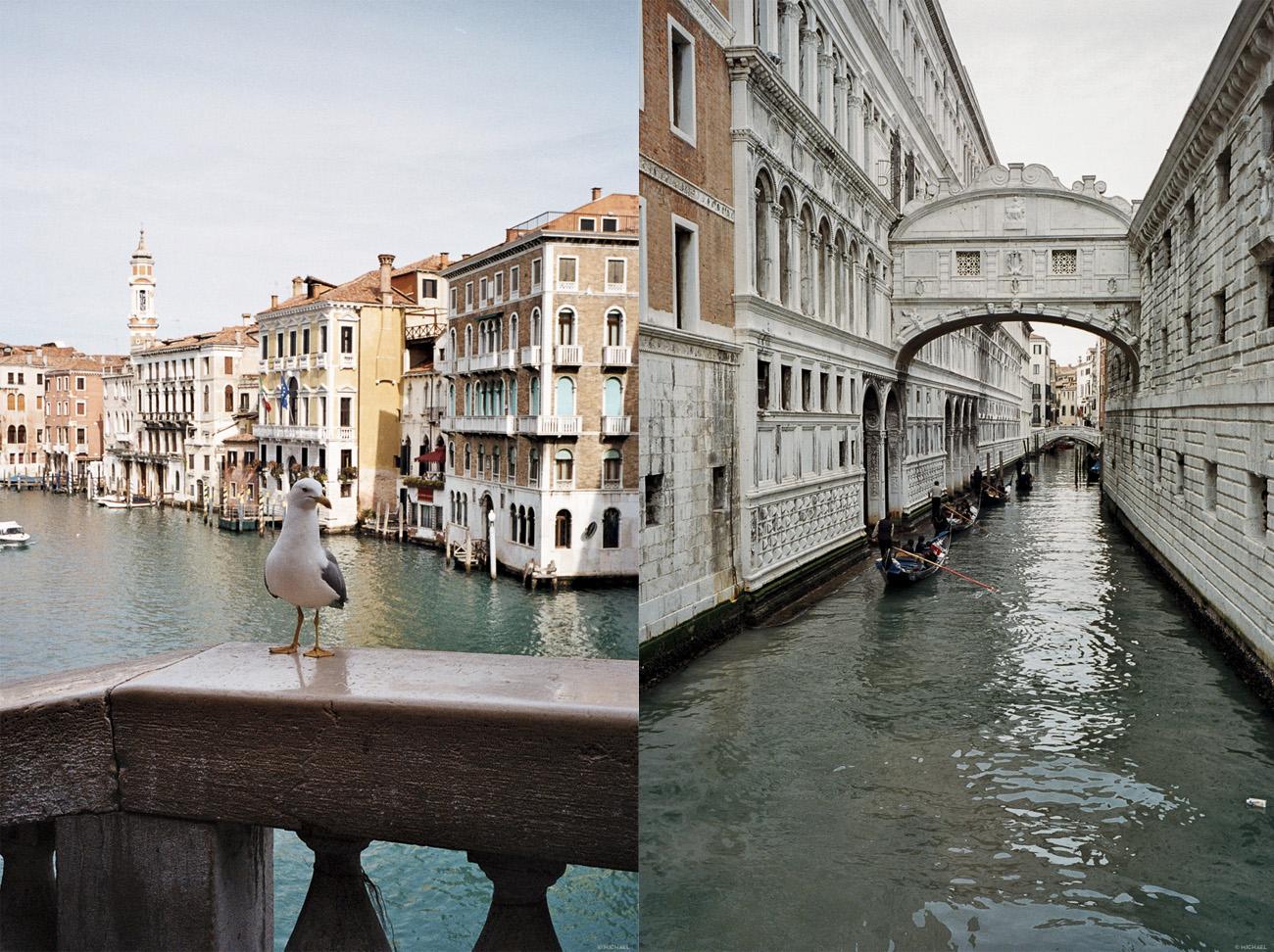 Art 50 Venise41