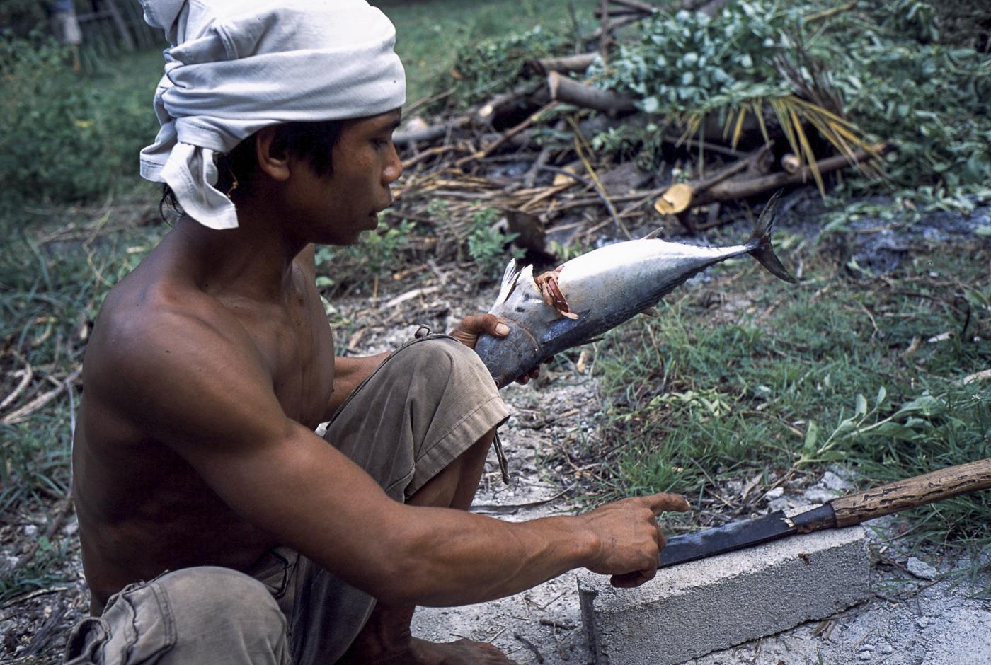 Art 51 Lombok47